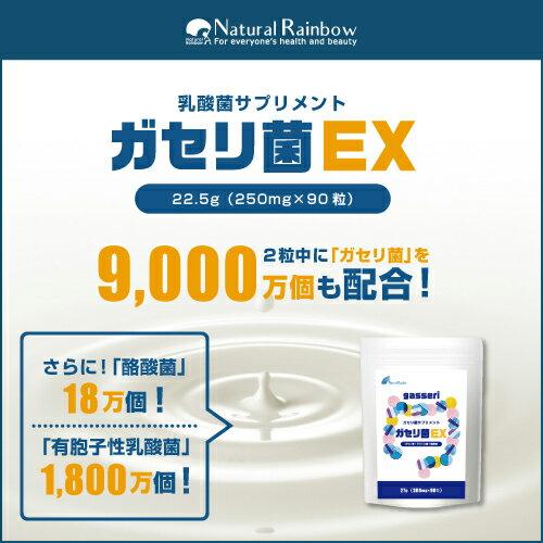 【1粒の含有量がすごい!】『ガセリ菌 EX 90粒』【ガセリ菌:約9000万個 含有!】乳酸菌たっぷり!でぶ菌対策に