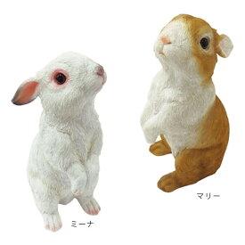 チアフルフレンズ ウサギのミーナ マリー ガーデニング オーナメント