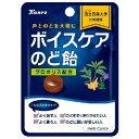 カンロボイスケアのど飴 コンパクトサイズ26g×6袋入 (キャンディ)