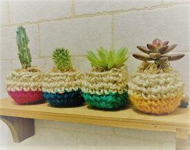 多肉植物、サボテン、セダムの寄せ植え ポットセット当店オリジナルの手編みニットポット4種色は赤、青、緑、黄ニットポット高さ約4.0cm、幅約5.0cm女性に大人気!プレゼントにも最適