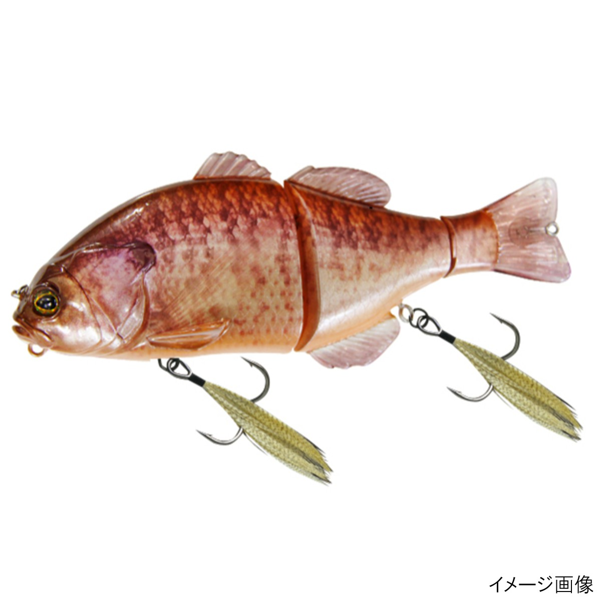 ジャッカル チビタレル RTカワシマアルビノギル(東日本店)