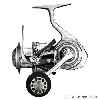 大和(Daiwa)sorutiga BJ(beijigingu)4000SH
