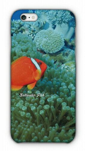 熱帯魚 No.3 ハマクマノミ(代引決済不可)【スマホケース ハードケース型】