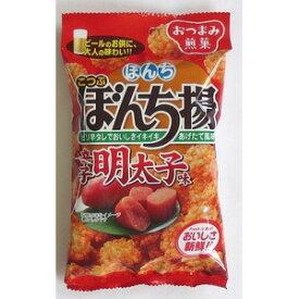 ぼんち ぼんち揚 辛子明太子味 40g×10入