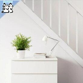 【IKEA Original】FEJKA 人工観葉植物 室内/屋外用 House bamboo 9 cm