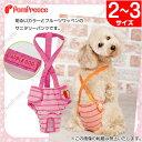 犬【定価の50%OFF】(ポンポリース)ダイパー型サニタリー フルーツボーダー 2〜3号