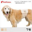 【ポンポリース】中大型犬マナーベルト フェアオーガニック 7号 /中型犬 オス バンド