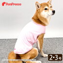 【定価50%OFF】冷えひえTシャツ POMP BEAR 2・3号 [ポンポリース][返品交換不可][3B:19990300]
