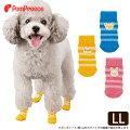 わんちゃんの足元ケアに【犬用・靴下】床で滑らない・傷舐め防止にも!可愛いおすすめはありませんか?