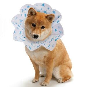 コンパクトエリザベスカラー エリコ M 5000円以上で送料無料 犬 エリザベスカラー ※初期不良以外の返品はお受けできません【クリックポスト2個までOK・代引不可】