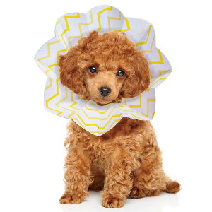 コンパクトエリザベスカラー エリコ S 5000円以上で送料無料 犬 エリザベスカラー ※初期不良以外の返品はお受けできません【クリックポスト2個までOK・代引不可】
