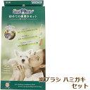 シグワン初めての歯磨きセット #127 子犬用送料無料*クリックポストで配送のため代引きはお選びいただけません。
