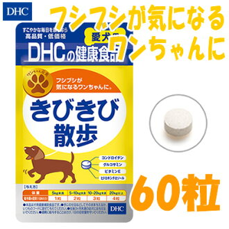 Brisk walk (for dog) 60 grain in immigration/Thorndike PR / / more than 5000 yen / / / for _ /