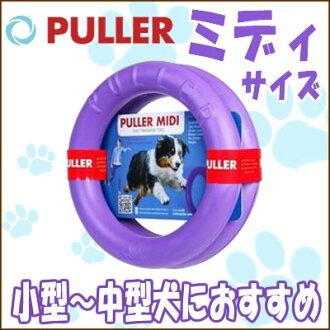 供/狗玩具/狗使用用供puramidi小、中型狗使用的超过/5000日圆的玩具/狗散步訓練/