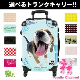狗習慣攜帶袋 beagle 犬 / 貴賓 / 攜帶箱 / 車 / 樹幹案例、 旅行箱包、 玩具
