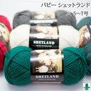 毛糸 ポイント7倍 並太 パピー シェットランド 色番2〜32 毛・メリノ 523 在庫商品