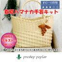 手芸 KIT ハマナカ H360-246 コサージュ付き楕円底バッグ 1セット バッグ【取寄商品】