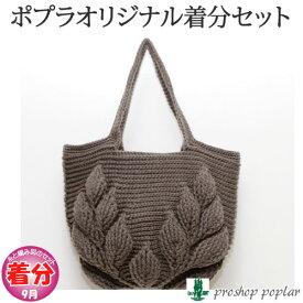【秋冬】リーフ柄の引き上げ編みバッグ【中級者】【編み物キット】