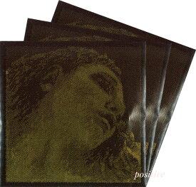 【Evah Pirazzi Gold】エヴァ ピラッツィ ゴールドバイオリン弦 2A,3D,4G(ゴールド巻) セット