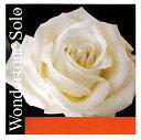 【WondertoneSolo】ワンダートーン ソロ バイオリン弦 1E(アドバンストスチール・3156/3152)