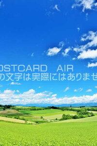 【日本の風景ポストカードAIR】北海道 青空の美瑛のはがきハガキ葉書 撮影/YOSHIO IWASAWA