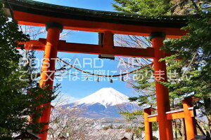 【日本のポストカードAIR】山梨県 新倉浅間神社の鳥居と富士山の風景のはがきハガキ葉書 撮影/YOSHIO IWASAWA