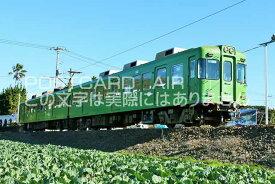 【日本の風景ポストカード】千葉県 銚子電鉄2000形のはがきハガキ葉書 撮影/YOSHIO IWASAWA