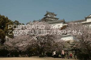 【日本の風景/姫路のポストカード】兵庫県姫路市姫路城のはがきハガキ photo by MIRO