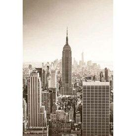 ニューヨークの夜明け ポスター New york at dawn