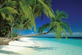 モルディブ ビーチ ポスター Maldives Beach 200730