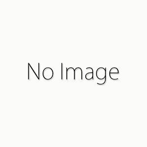 ノレブ 1/43 ボルボ V60 2013 シーシェル 完成品ミニカー 870015
