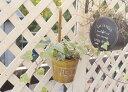 【ラスティックハンギングポットL】ブリキ ハンギング ハンギングポット 鉢 ポット ガーデン雑貨 かわいい ジャンクガーデニング ベランダガーデニング ベランダ 庭 ガーデン おしゃれ ポタフルール