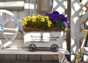 カトルゼソンオーバルWH 鉢 鉢植え ポット ガーデンポット ジャンクガーデン カート型 オーバル型 かわいい おしゃれ アンティーク エイジング シャビー ナチュラル ベランダ ベランダガー