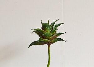 【多肉フェイクアロエ】フェイクグリーン フェイクフラワー 多肉 多肉植物 グリーン ナチュラル かわいい 造花 ポタフルール