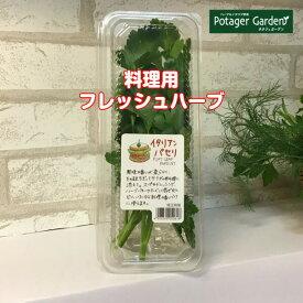 フレッシュハーブ イタリアンパセリ1パック(レシピ付 ハーブ ハーブティー ミックス 野菜 サラダ 生 業務用 使い方 ギフト スパイス Herb Tea)