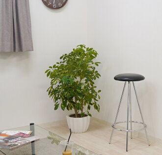 The Pop That Design Counter Stool Black Pc 108bk Who Is Simple Chair Fashion Modishness Which There No Heiss Tool