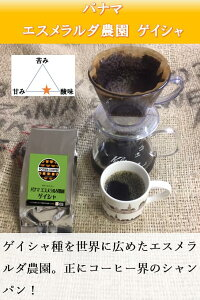 【送料無料】パナマ エスメラルダ 農園 ゲイシャ(100%) 500g コーヒー豆 焙煎コーヒー豆 珈琲豆 生豆 焙煎豆 豆粉 豆 ストレート コーヒー 深煎りコーヒー 自家焙煎 珈琲 焙煎 煎りたて 新