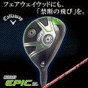 Epicsubzero fw01