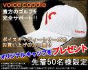 Voicecaddie_tokuten