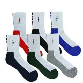 【セール】【1点限りネコポス対応】 インザペイント IN THE PAINT パネルソックス ITP860W 靴下 バッソク バスケ スポーツ