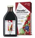 サルス フローラディクス 500ml 鉄 鉄分 ノンヘム鉄 リキッド ドリンク 液状 液体 果汁 ハーブエキス 純植物性 植物由来 天然素材 スタミナ 持久力 貧血改善 貧血予防 Salus