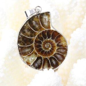 アンモナイト ペンダント|Ammonite 化石 アンモン貝 マリエラ 菊石 fossil アンモナイト ネックレス ペンダント チャーム Pendant Necklace 首輪|メンズ レディース 限定 一点物 パワーストーン ア