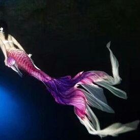 水族館演出用 水着 レディース 人魚姫 コスチューム マーメイド セパレートビーチ コスプレ 人魚姫 サイズ指定可 セクシー ハロウィン 仮装 水着 記念撮影 写真撮影用