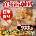 国産牛ホルモン 牛シマチョウ500g ホルモン 和牛 大腸 モツ てっちゃん 肥腸 intestine