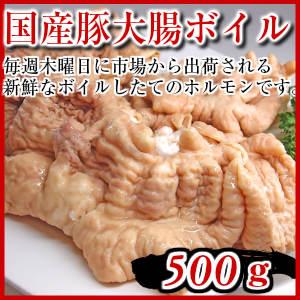 国産豚ホルモン500g 豚大腸 pork big intestine