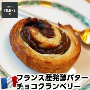 LE FOURNIL DE PIERREフランス産ル・フルニル・ドゥ・ピエール製発酵バター100%パン オ チョコクランベリー40g×2個父の日 敬老の日