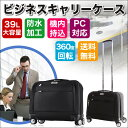Business bag main