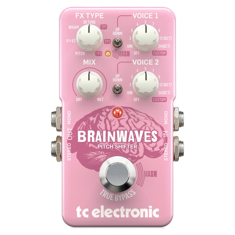 t.c.electronic 《tcエレクトロニック》 BRAINWAVES PITCH SHIFTER【あす楽対応】