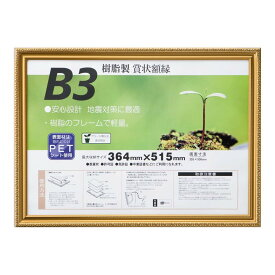 賞状額 金消-R B3 33J045B4400
