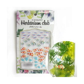 ハーバリウムクラブ ハーバリウムシール 熱帯魚 (両面印刷) HR-NTG-101